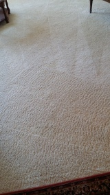Clean carpets by Elite