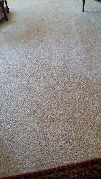 Clean carpets by Elite